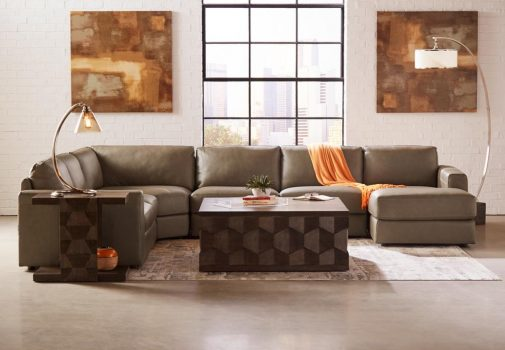 Chaise Sectional in a Living Room